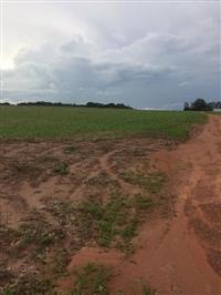 Fazenda 250ha em Diamantino/MT