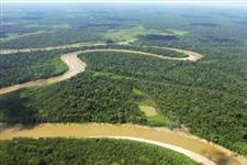 Vendo Fazenda No Acre - 4750 ha (R$150,00/ha)
