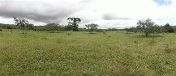 Fazenda em São Gonçalo dos Campos BA