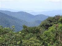 Área Para Compensação Ambiental - Bioma Mata Atlântica -  Reserva Legal - Estado de São Paulo