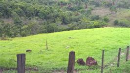 Procuro Fazenda de 2000 alqueires