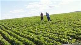 Fazenda na região do urucuia mg