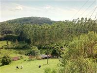 Área de 110 alqueires localizado no município de Guapiara