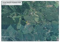 Fazenda Rise - Cajati