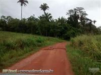 Fazenda excelente no Sul do Pará, entre Xinguara e Rio Maria