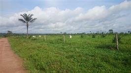 Fazendas no Pará